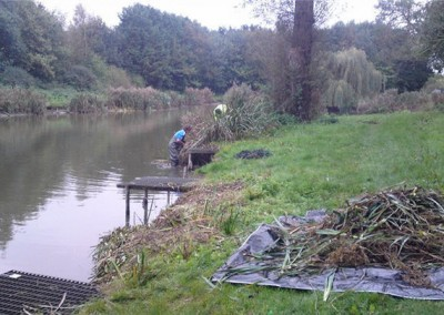 Risby Park Fishing Ponds0003