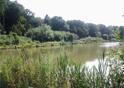 Risby Park Fishing Ponds0023