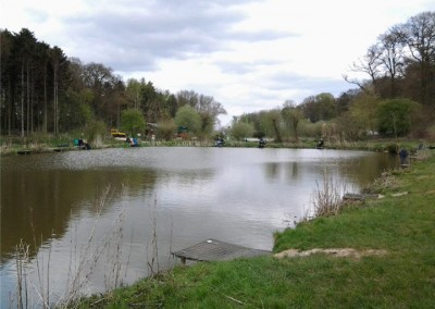 Risby Park Fishing Ponds0027