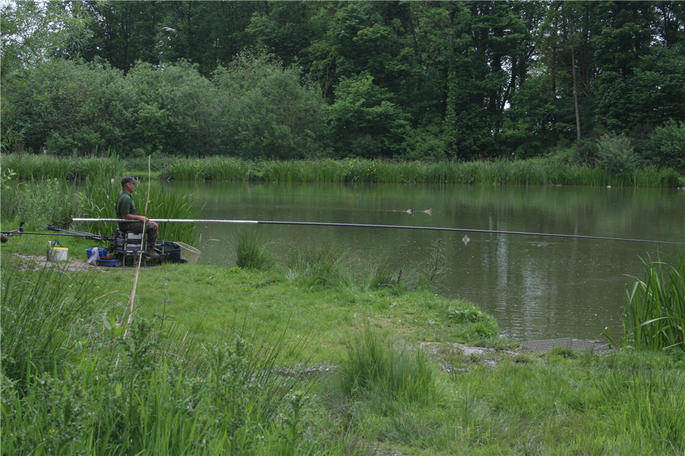 Risby Park Fishing Ponds The Best Coarse Fishing In The East Riding